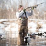 bird dog, hunting dog, gun dog, lifestyle photography