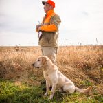 sporting dog, gun dog, hunting dog, dog photographer, outdoor photographer